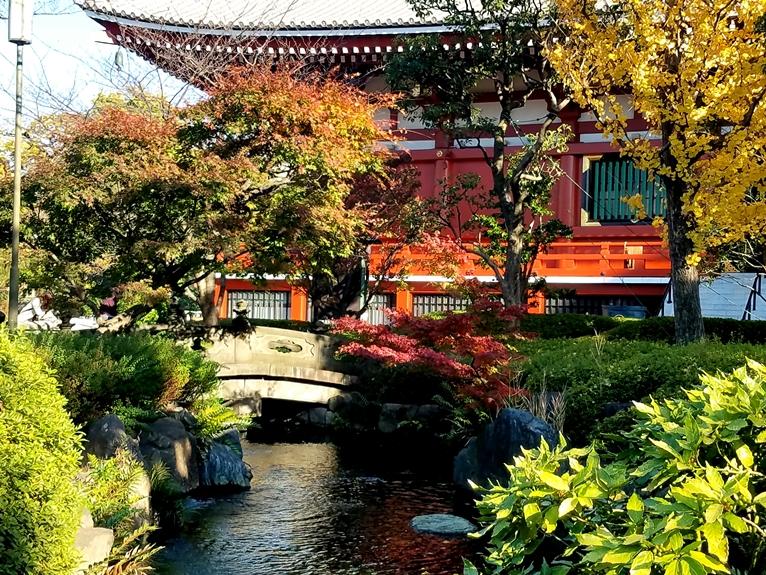 #6Aasakusa_neighborhood_tokyo_japan