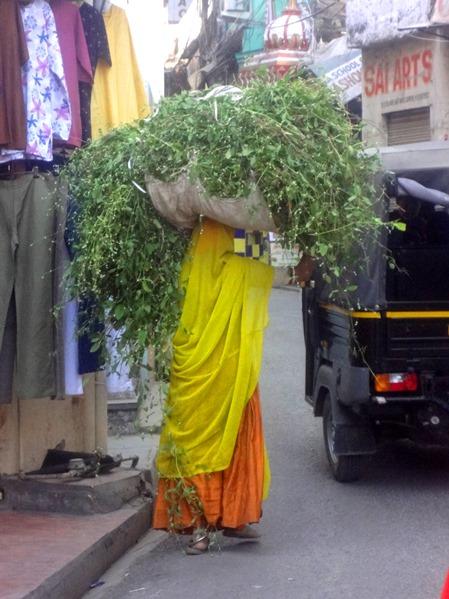 11B_women-of-the-world-india