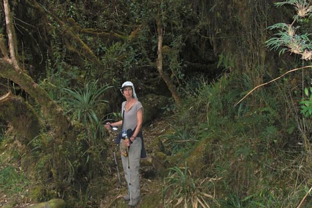 10B_the_inca_trail_peru