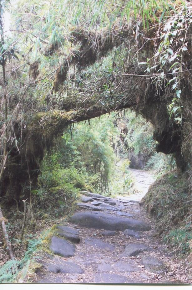 10D_the_inca_trail_peru