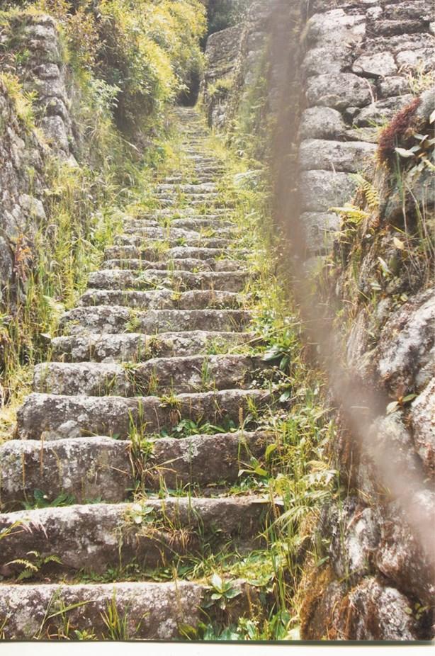 5A_the_inca_trail_peru