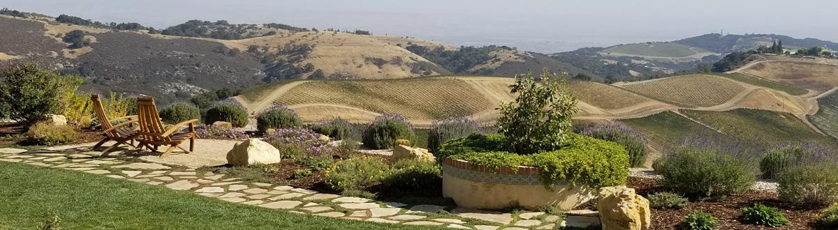 0_california_road_trip_santa_monica_to_paso_robles_wine_country